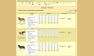 Dogzer - Buy a dog at auction and other interactions